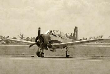 Wall Mural - World War II era airplane