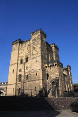 Wall Mural - Newcastle's Castle