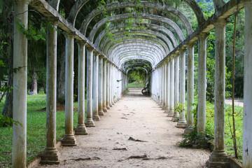 Misterious garden in Rio de Janeiro