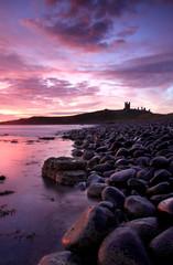 Fototapete - Dunstanburgh castle Sunrise