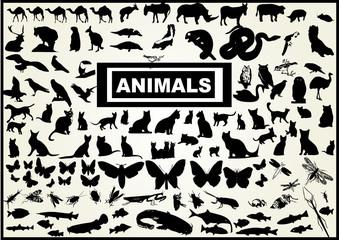 120 vectors of animals