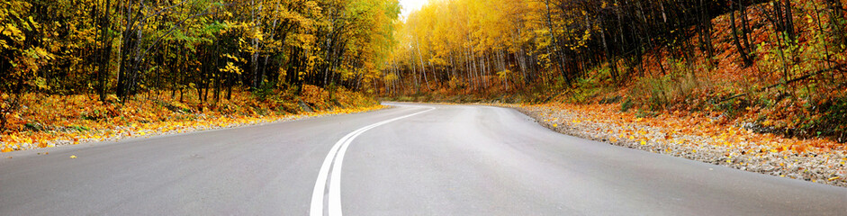 autumn road panorama