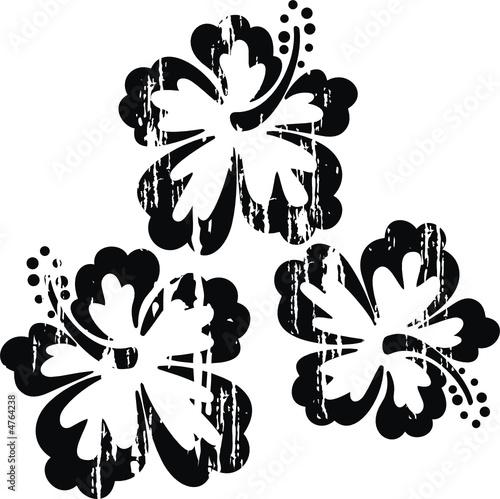 Flor Hawaii Vintage Im&225genes De Archivo Y Vectores