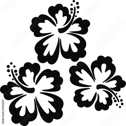 Flores hawaii imagens e vetores de stock royalty free no - Plantillas para pintar paredes para imprimir ...