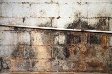 Water damaged and moldy basement wall