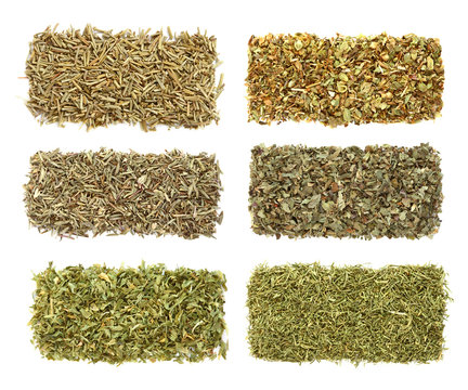 six dried herbs Rosemary Oregano Thyme Basil Parsley Dill