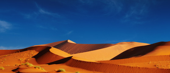 Canvas Prints Drought Dunes of Namib Desert. Sossusvlei, Namibia.