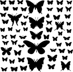 Butterfly silhouettes