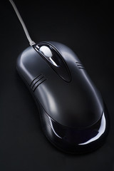 Computer mouse on a black background