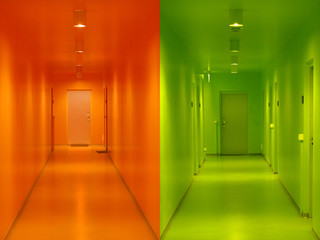 colors and doors