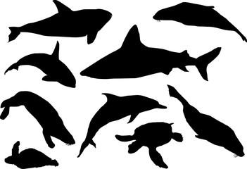 sea mammal silhouettes collection