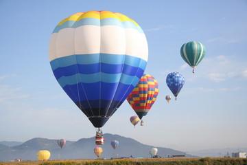 Beautiful balloon group