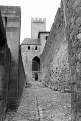 Carcassonne noir et blanc