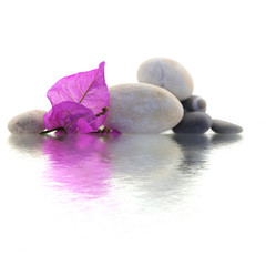 décor zen