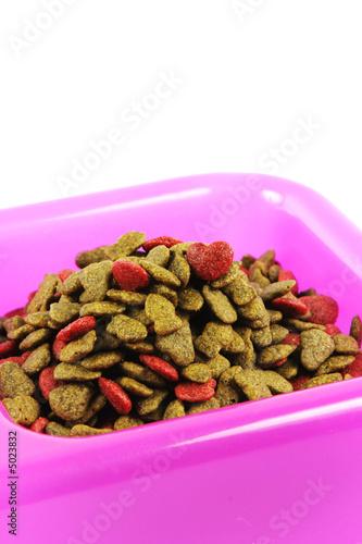 Рецепт кошачьего корма в домашних условиях