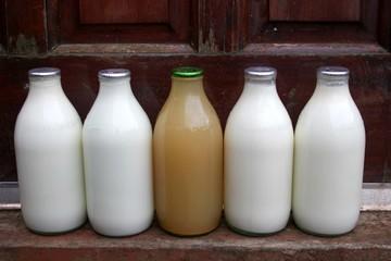 milk delivery