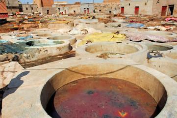 Morocco, Marrakech: Tannery