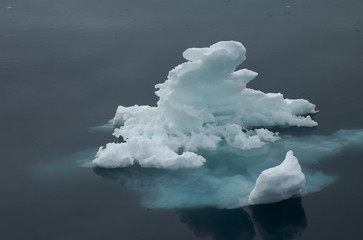 Small iceberg in the Arctic