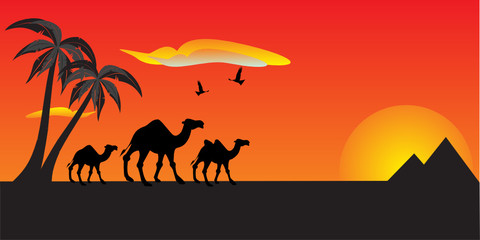 Illustration of Camels, pyramids in background. Travel concept.