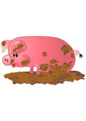 DIRTY PINK PIG IN MUD