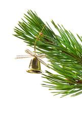 gold(en) campanula,Christmas tree ornaments