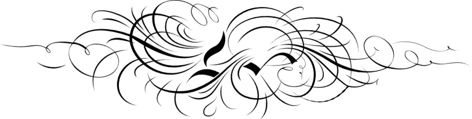 Calligraphy Ornament From Separate Curves.