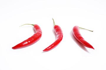 drei rote Paprika oder Chili