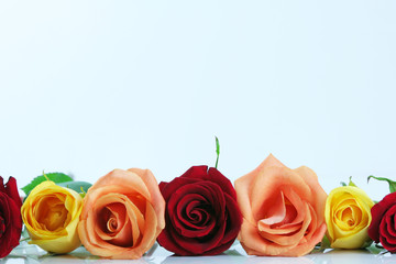 Red, yellow, peach color roses lined up. Type space above