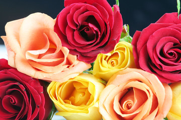 Red, yellow and peach colored roses on black background.