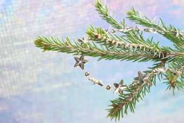 Bright asterisks on coniferous branch, embellishment cristmas