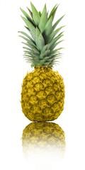Golgende Ananas, golden pineapple
