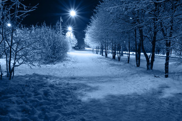 Night town Fotomurales