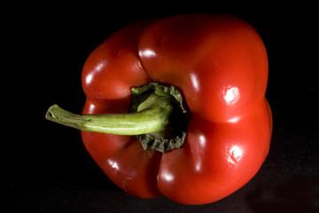 pepper silhouette