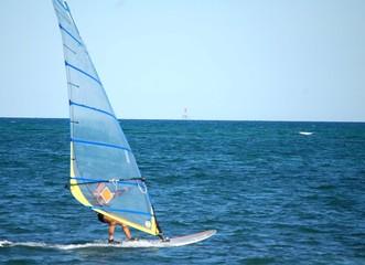 South Florida Windsurfer