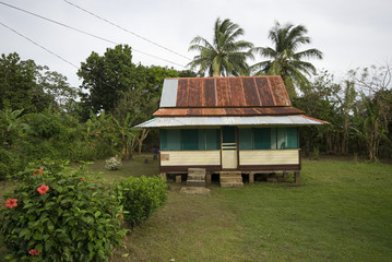 native house with tin roof
