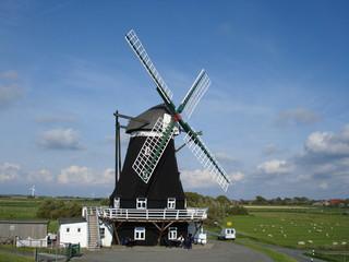 windmühle pellworm