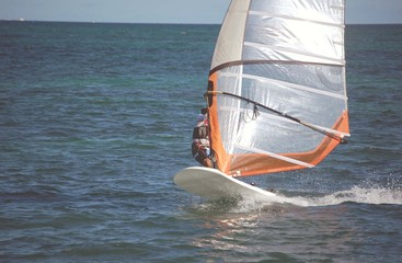 Atlantic Ocean Windsurfer