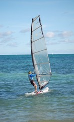 Windsurf Sailor