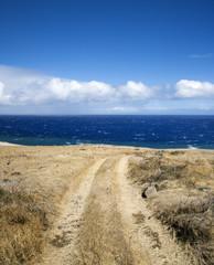 Dirt road to beach.
