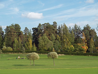 Golf field in autumn colors, view