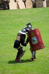 Printed kitchen splashbacks Knights Roman Gladiators