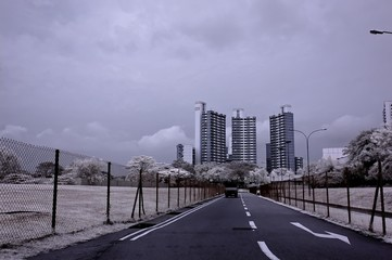 infrared photo- road and modern building in the parks