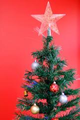Holidays - Photo of a Tree Symbol of Christmas .