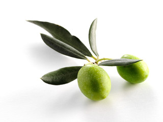 TWO OLIVES ON BRANCH WITH LEAVES