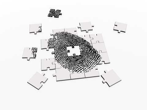 jigsaw puzzle fingerprint