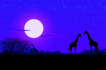 Africa di notte