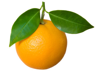 ripe orange with leaf isolated in white