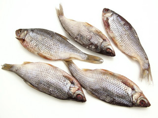 Five dry fishes on the white background