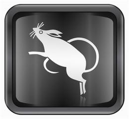 Rat Zodiac icon, isolated on white background.