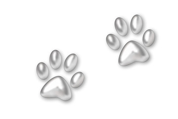 silver trace from paws animal